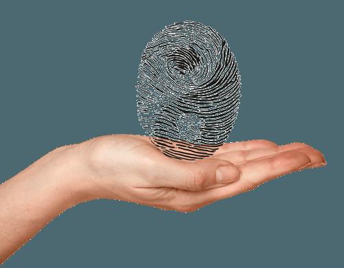 Shiatsu en Acupunctuur Praktijk Westland